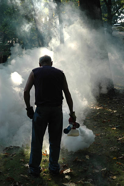 Fogging Mosquitoes stock photo