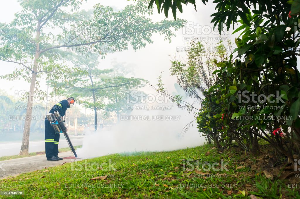Fogging to eliminate aedes mosquito stock photo