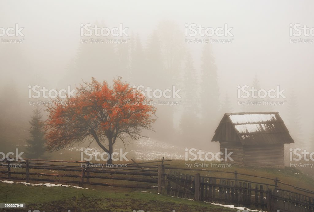Foggy autumn morning on mountain meadow royalty-free stock photo