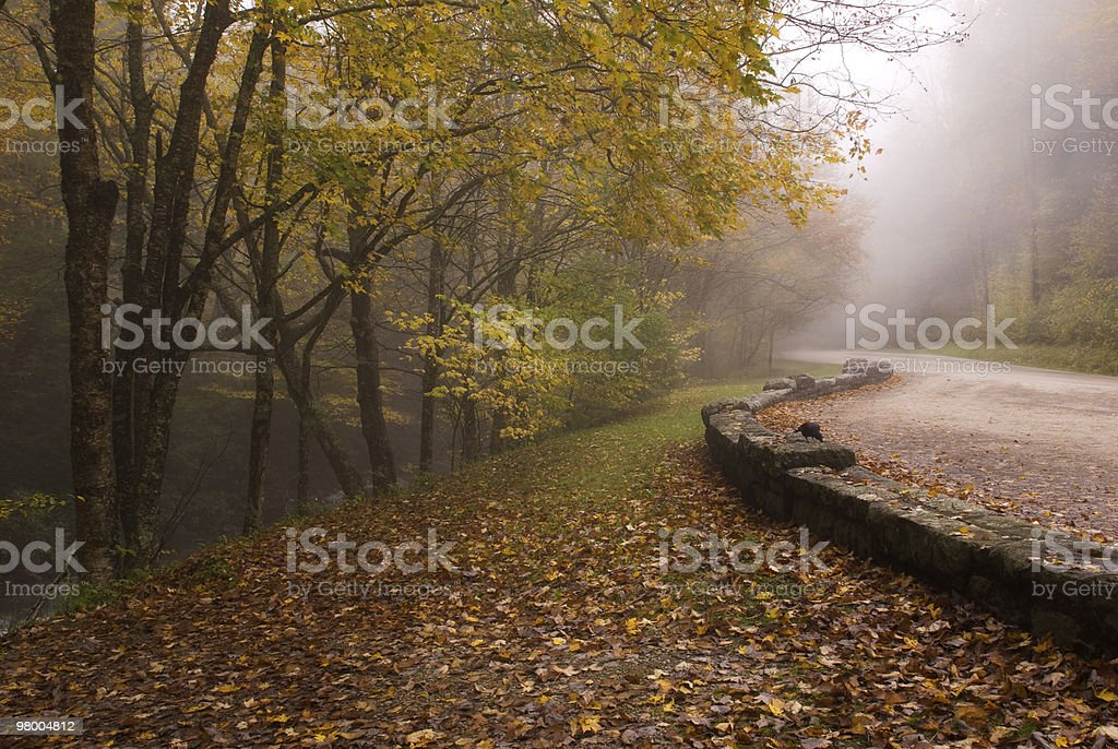 Foggy Autumn Road Great Smoky Mountains royalty-free stock photo