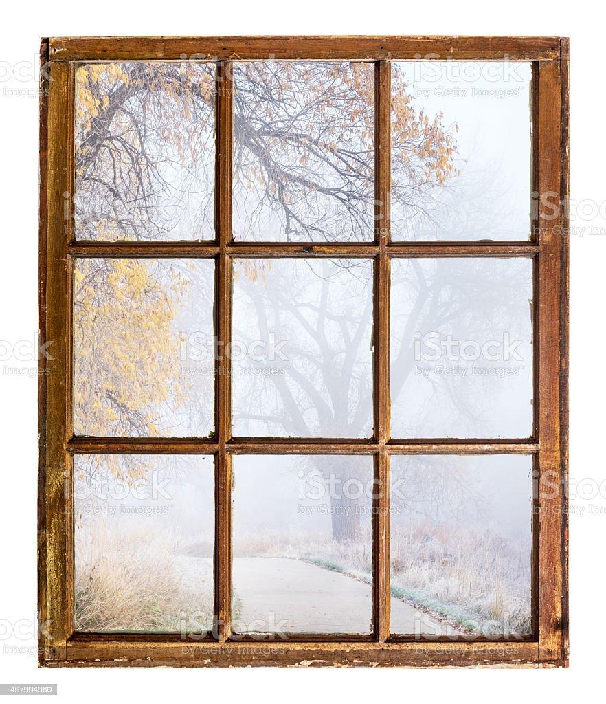 foggy autumn scene stock photo