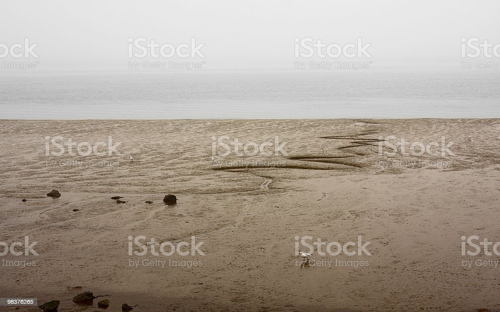 Foggy Beach royalty-free stock photo