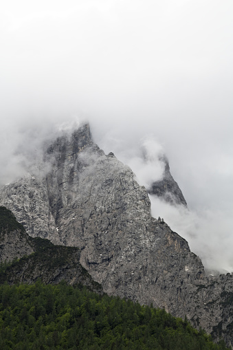 Foggy Clouds Rising From Dark Alpine Mountain Forest Stock Photo & More Pictures of Autumn