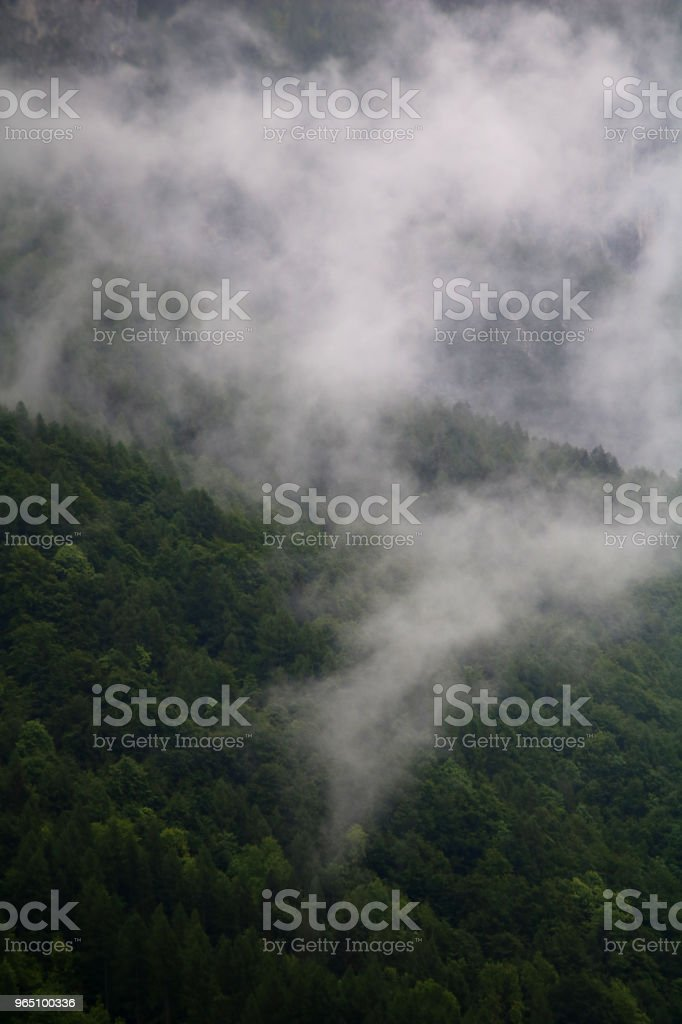 foggy clouds rising from dark alpine mountain forest zbiór zdjęć royalty-free