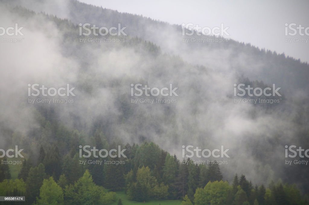 foggy clouds rising from dark alpine mountain forest royalty-free stock photo