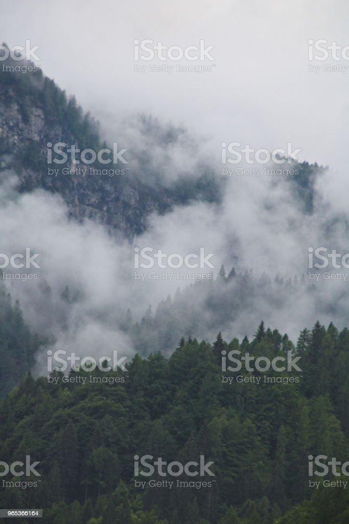 안개 구름 어두운 알파인 산 숲에서 상승 - 로열티 프리 0명 스톡 사진