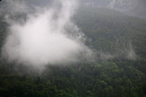 안개 구름 어두운 알파인 산 숲에서 상승 0명에 대한 스톡 사진 및 기타 이미지