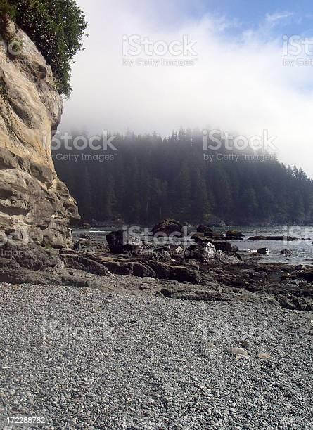 Photo of Foggy Coast