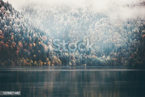 istock Foggy Coniferous Forest and lake wild landscape Travel serene scenic view 1029921482