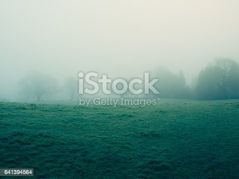 foggy countryside in Northern Ireland