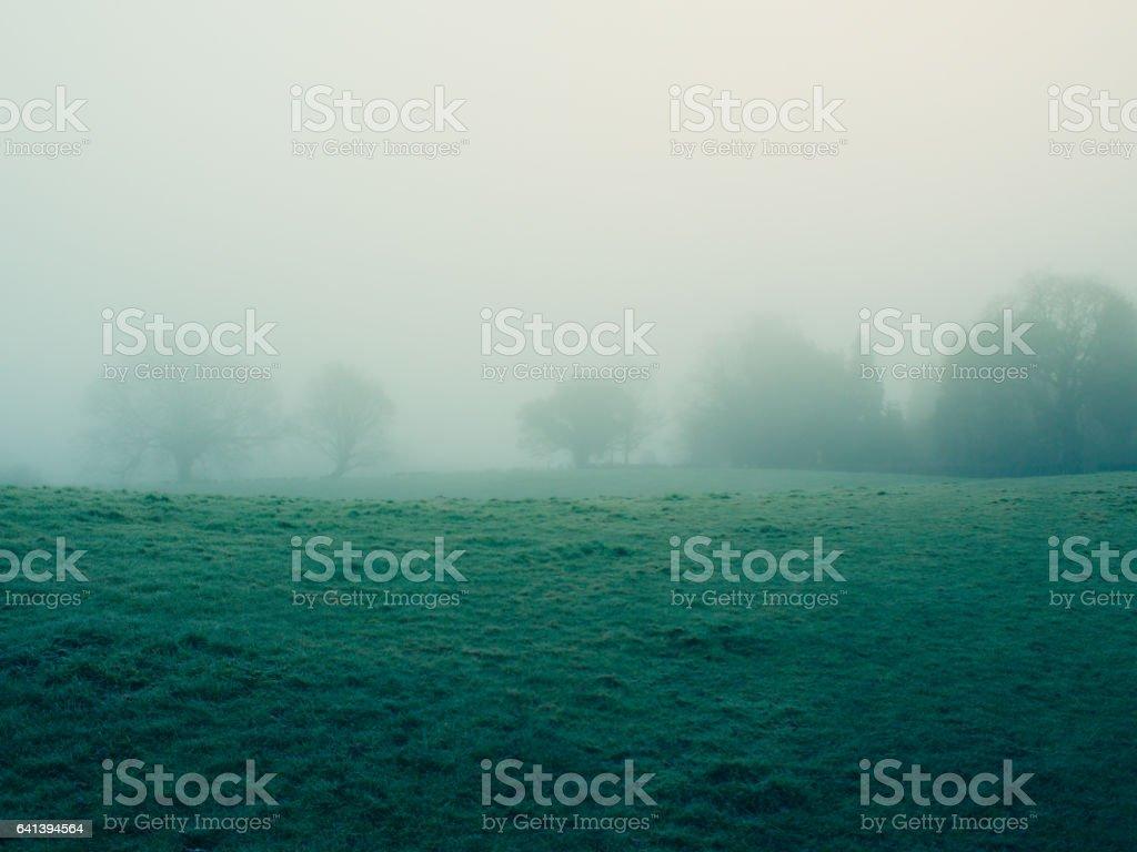foggy countryside stock photo