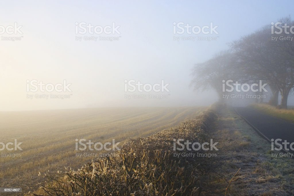 Foggy Day 3 royalty-free stock photo