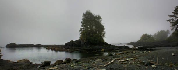 nebliger Tag am Botanical Beach, Vancouver Island, Kanada – Foto