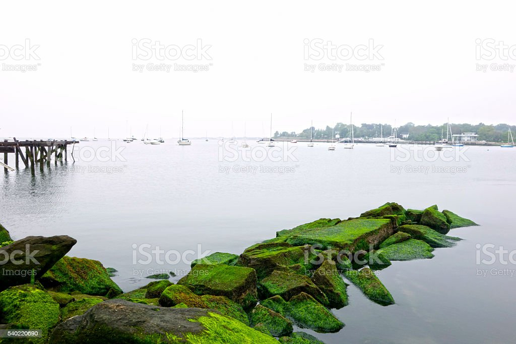 Foggy Day at Seaside Park in Bridgeport, Connecticut stock photo