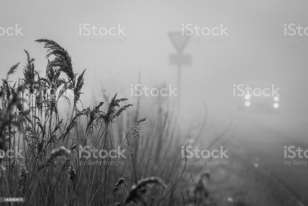 Foggy Driving, Cambridgeshire, Swavesey, Weather, Road stock photo