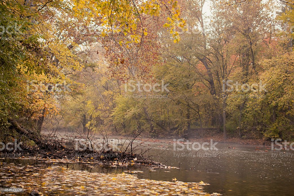 Foggy Fall River stock photo