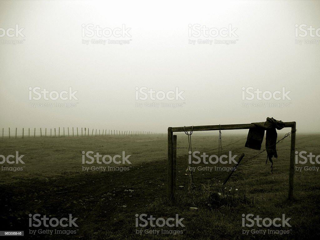 foggy field stock photo