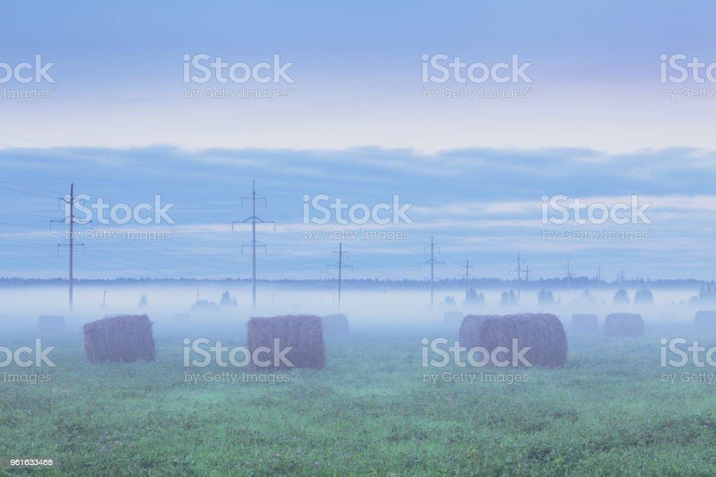 Foggy field with haystacks stock photo