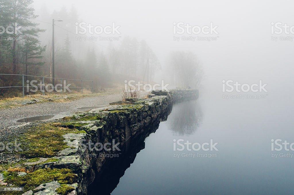 Foggy forest lake coast stock photo