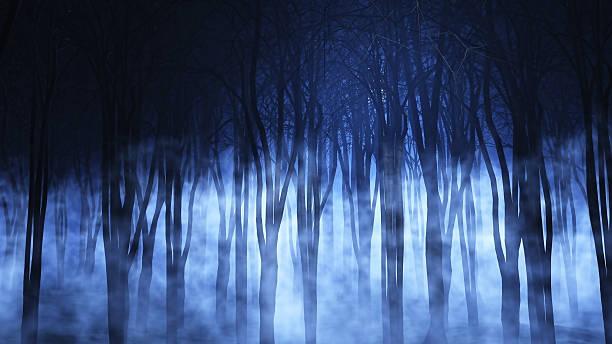 3 d foggy forest - waldfriedhof stock-fotos und bilder