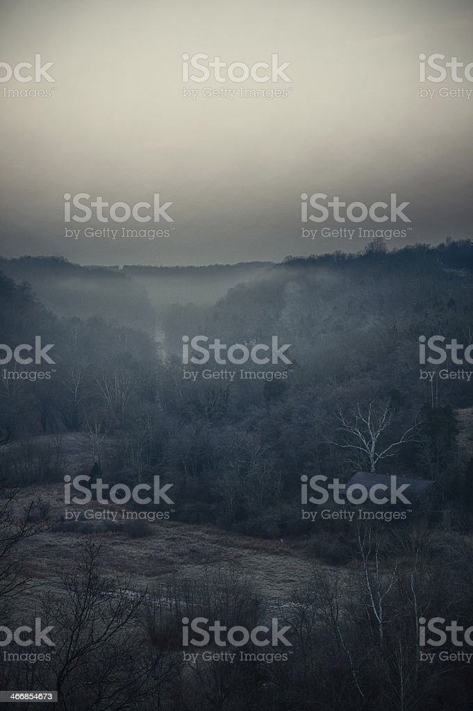 Foggy Haunting Scene royalty-free stock photo