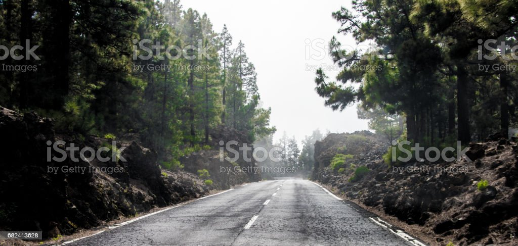 Foggy Highway royalty-free stock photo