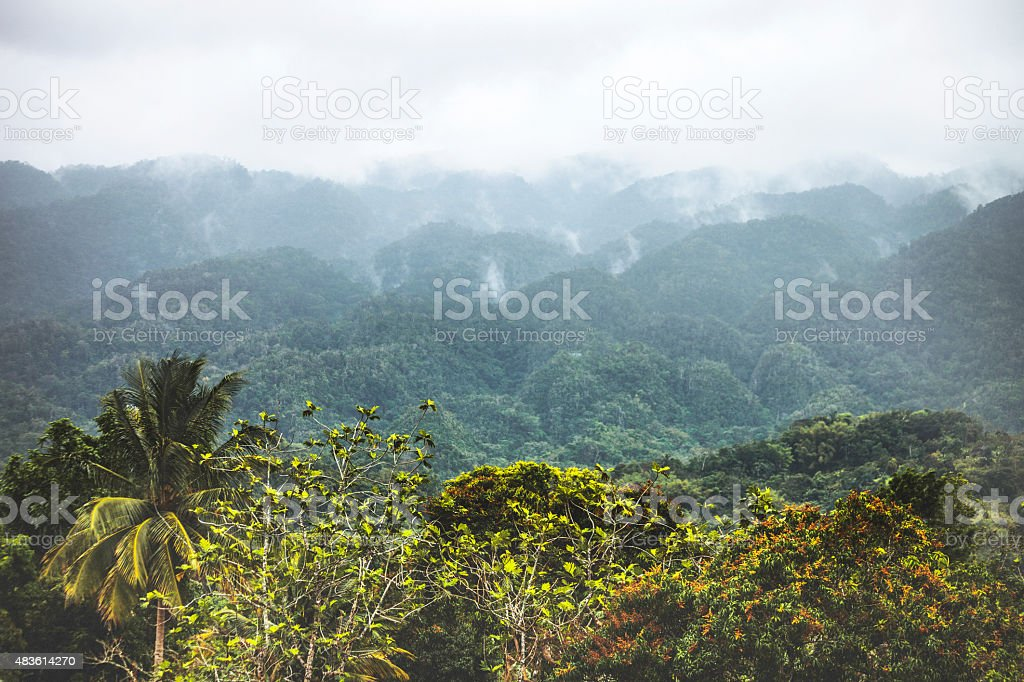 Foggy jungle hills. Jamaica. stock photo