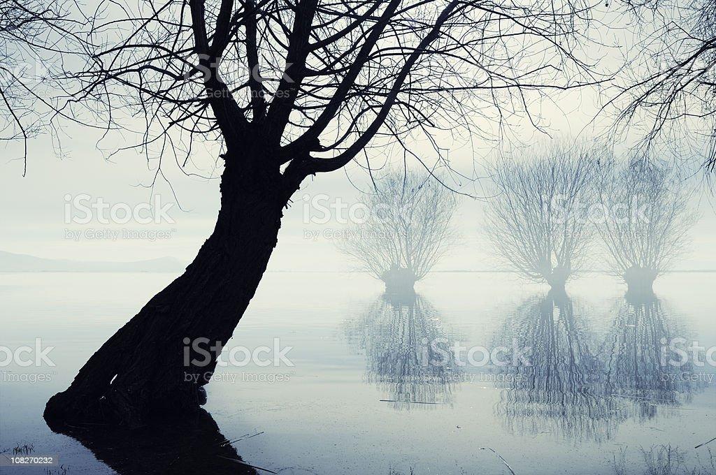 Foggy Lake in Civril, Denizli, Turkey stock photo