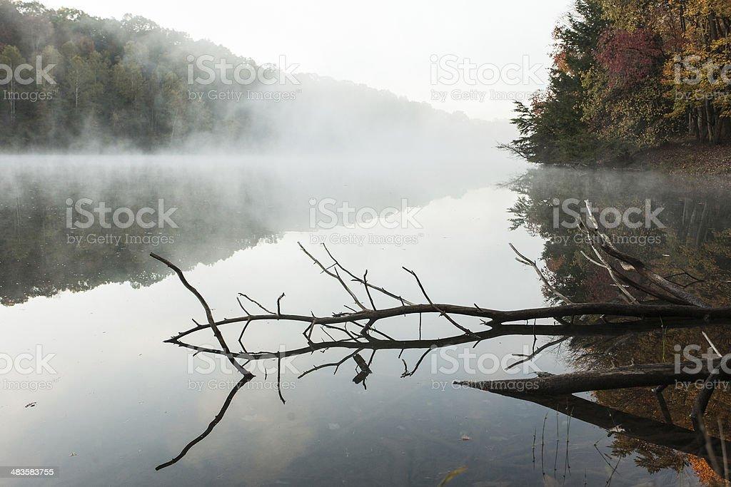 Foggy Lake stock photo