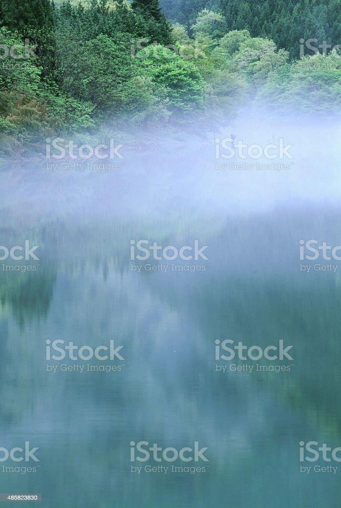 霧の湖 ストックフォト
