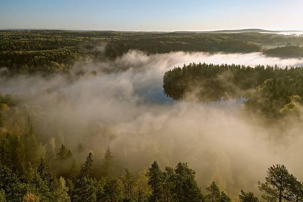 Foggy lake scenery stock photo