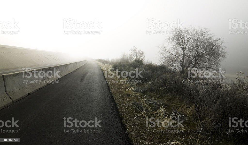 Paisaje de niebla foto de stock libre de derechos