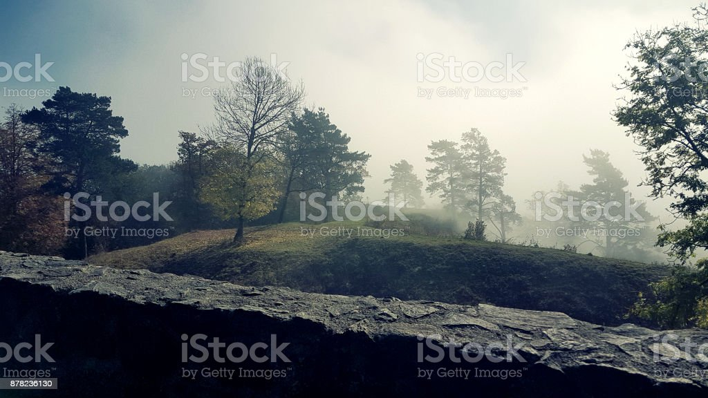 A foggy landscape stock photo