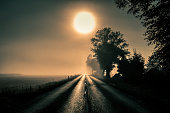 Foggy landscape with an empty road leading into the misty distance. The Sun shining through the fog in the countryside. Dark autumn, Halloween concept.