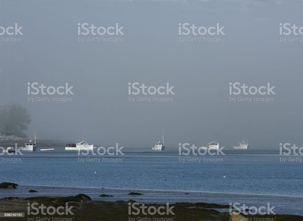 Niebla ensenada de Maine foto de stock libre de derechos