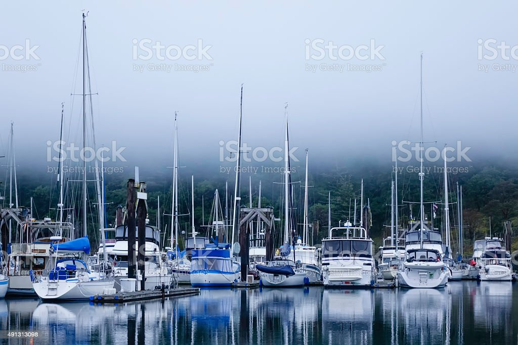Foggy marina stock photo