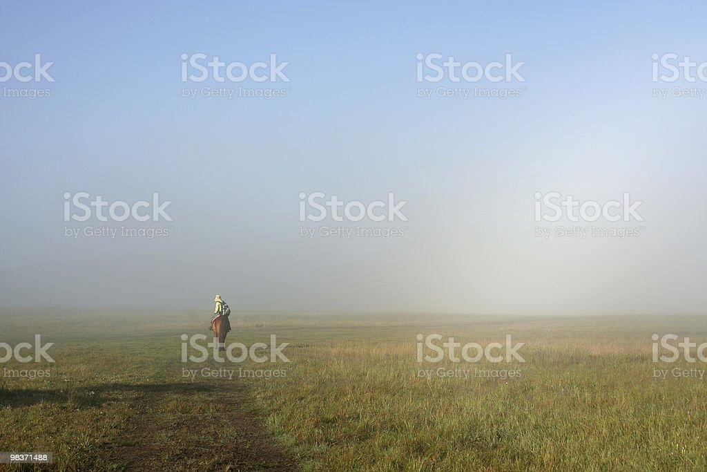 foggy meadow royalty-free stock photo