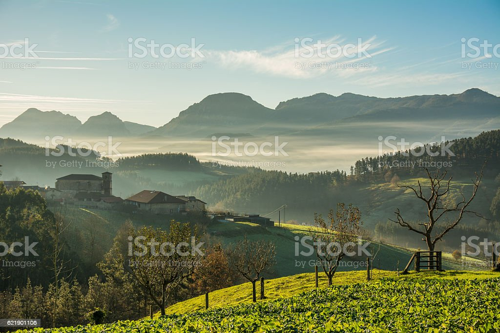 foggy morning at biscay countryside, spain stock photo
