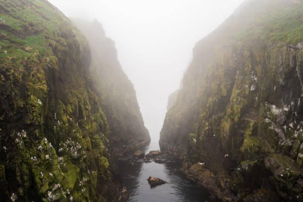Foggy morning at Mykinesholmur hiking path above the fjord. Mykines, Faroe Islands. stock photo