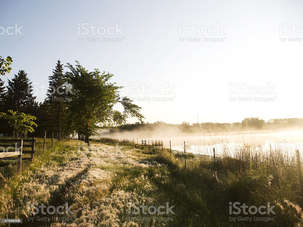 foggy morning at the lake royalty free stockfoto