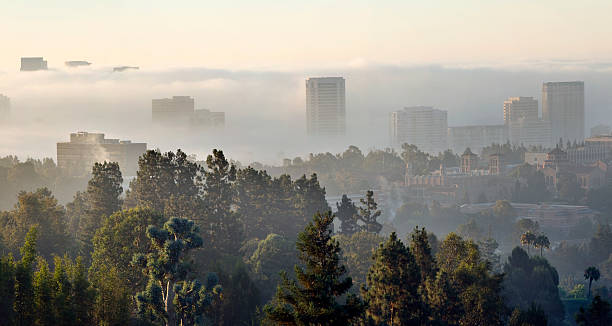 foggy morning city-scape XXXL Wide angle view of Westwood Village and the University of California Los Angeles on a foggy gray summer morning. This composite image is made of five vertical full frame merged files. westwood neighborhood los angeles stock pictures, royalty-free photos & images
