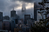 A foggy morning in San Francisco just as the sun begins to rise. Fog is rolling through the iconic skyscrapers of the financial district as the sun begins to break through the branches of a nearby tree.
