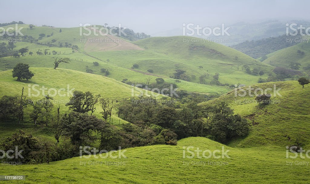 Foggy morning in the Costa Rica countryside stock photo