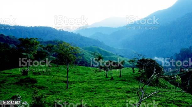 Foggy morning in the sierra nevada de santa marta picture id949082192?b=1&k=6&m=949082192&s=612x612&h=qetbl3ga1mekyfaq iuq 5sg i7vncvttddsowfvdq0=