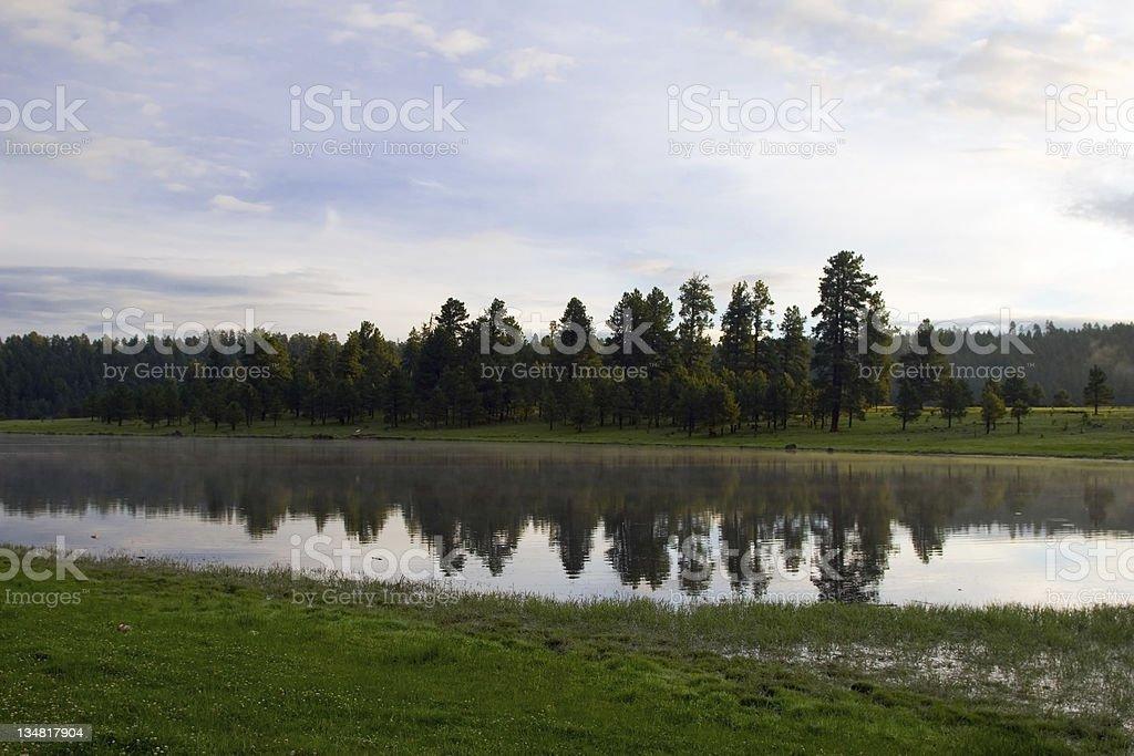 Foggy Morning Lake royalty-free stock photo