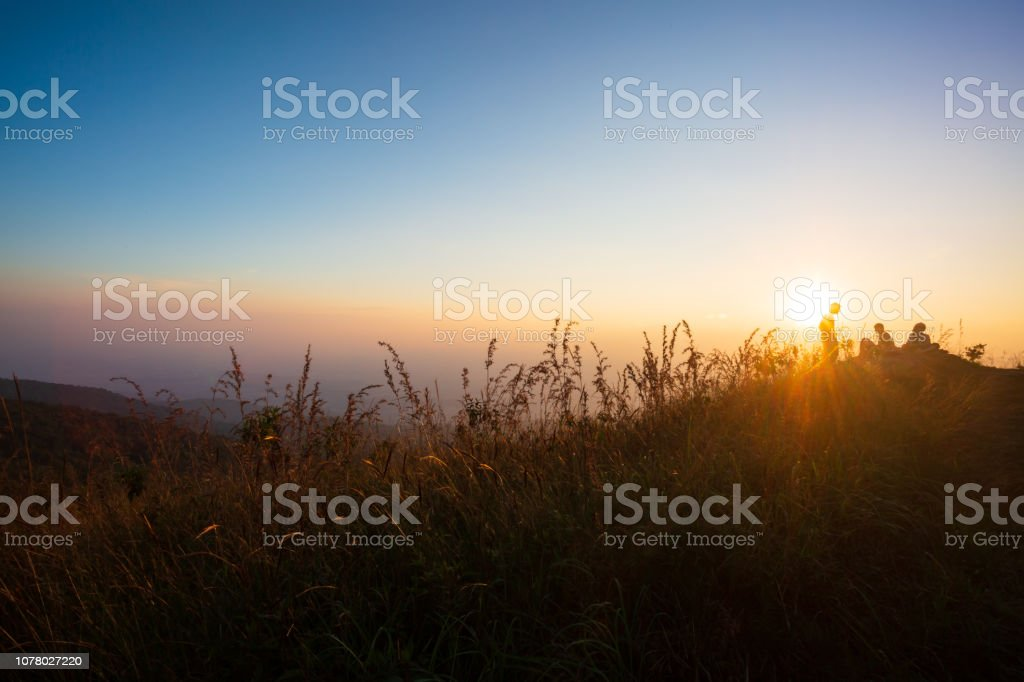Foggy morning on polish meadow stock photo