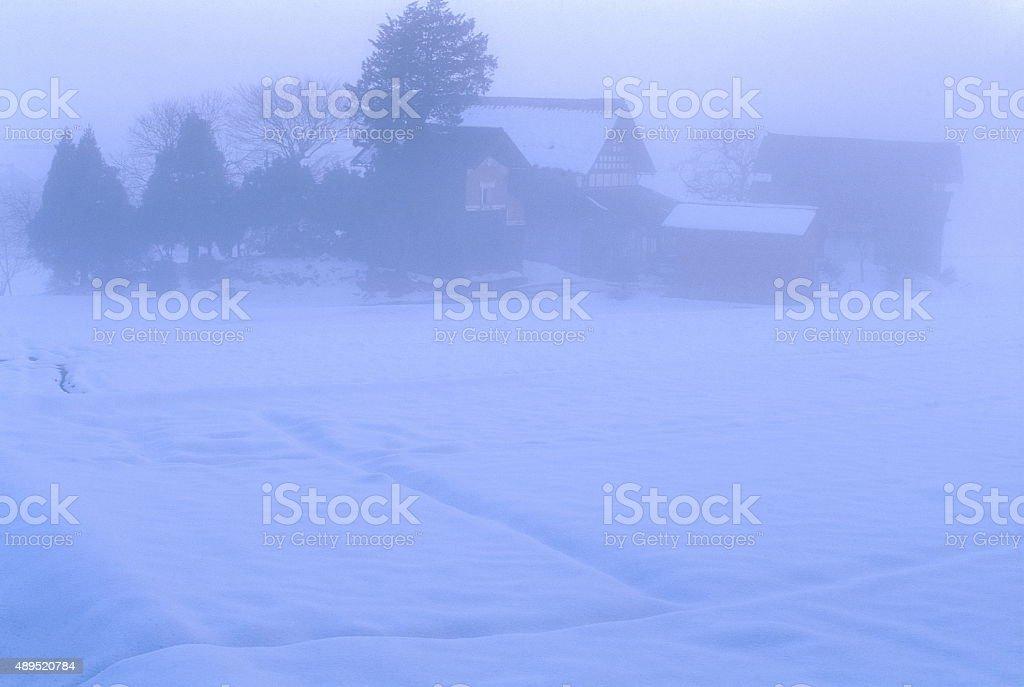 霧の朝 ストックフォト