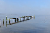 Foggy morning with pier and birds
