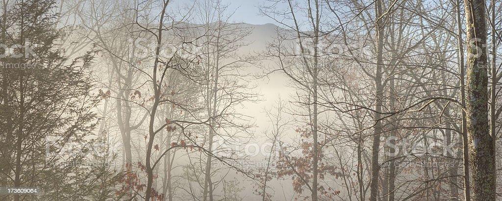 Foggy Mountain Break of Dawn (XXL) royalty-free stock photo