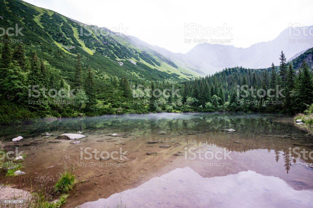 foggy mountain lake in summer photo libre de droits